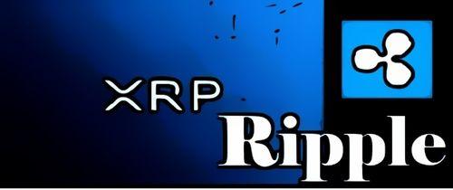 ریپل چیست؟