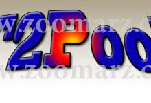 ارز دیجیتال F2Pool - زوم ارز