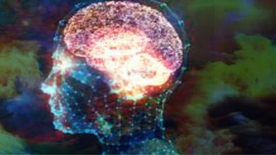 تصویر آزمون روانشناسی قبل از ورود به بازار های مالی|روانشناسی و مدیریت ریسک