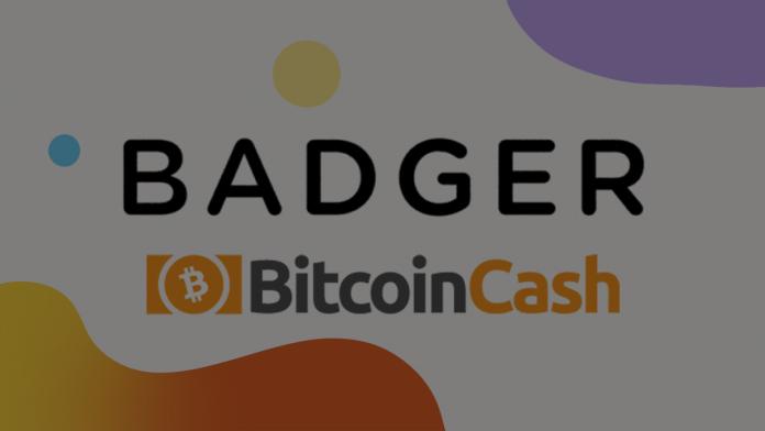badger - افزونه های ارزهای دیجیتال