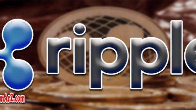 بهترین کیف پول های ریپل | معرفی کیف پول های ارز دیجیتال XRP