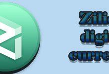 زیلیکا چیست ؟