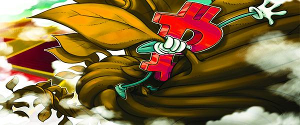 """""""صعودی شدن بازار بیت کوین"""" تحت تاثیر نهنگ های بیت کوین"""