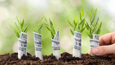 چرا Yearn.finance (YFI) روندی رو به رشد دارد؟