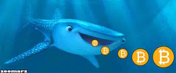 فشار فروش نهنگ بیت کوین