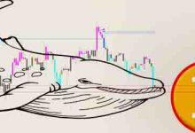 تصویر ریزش احتمالی قیمت بیت کوین با حرکت نهنگ های Coinbase