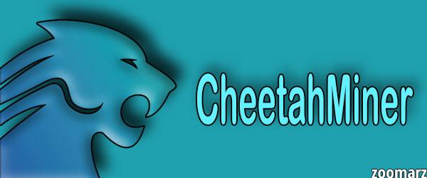 کمپانی چیتا ماینر