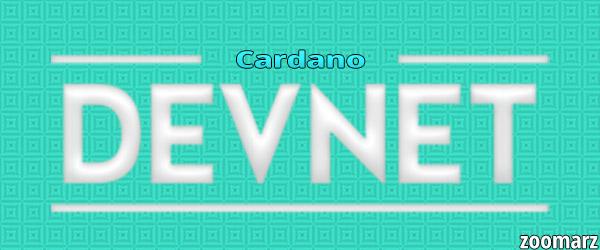 راه اندازی دستگاه مجازی Ethereum DevNet توسط کاردانو