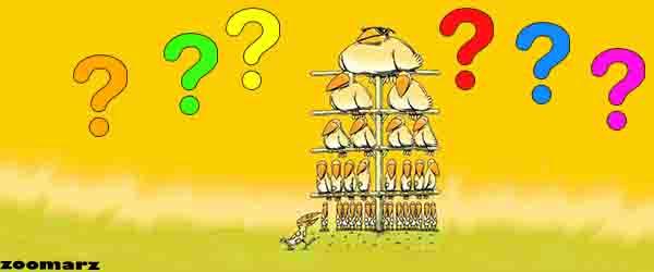 طرح هرمی چیست ؟