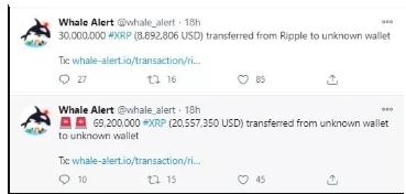 اطلاعات سرویس whale alert