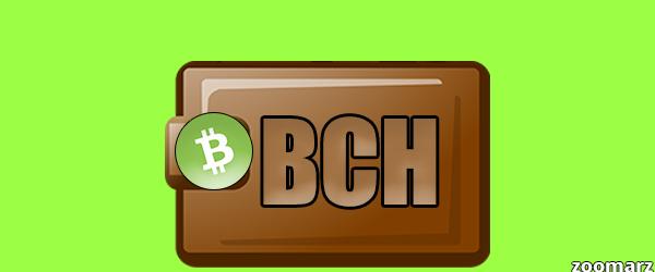 کیف پول های ارز دیجیتال بیت کوین کش