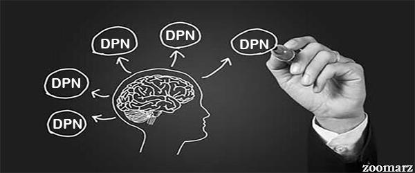 ویژگی های DPN ها