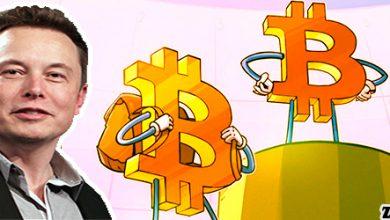 تهدید ایلان ماسک و کاهش قیمت بیت کوین