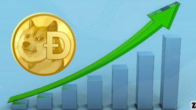 دلایل افزایش قیمت دوج کوین طی یک سال اخیر