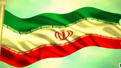 ایران به هیچ شرکت خارجی مجوز استخراج نداده است