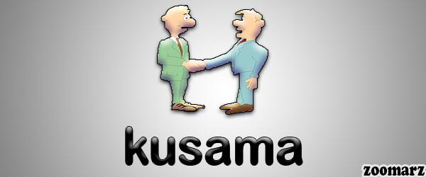 معرفی نقش های موجود در شبکه کوساما Kusama