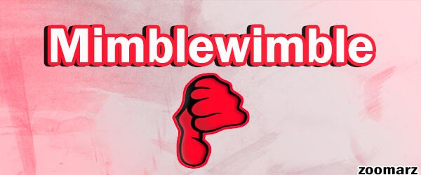 بررسی معایب پروتکل میمبل ویمبل Mimblewimble