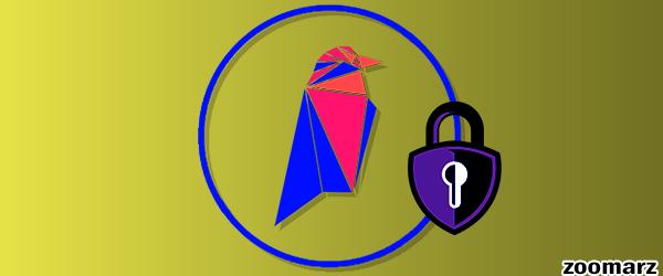 امنیت پلتفرم ریون کوین Ravencoin چگونه است؟