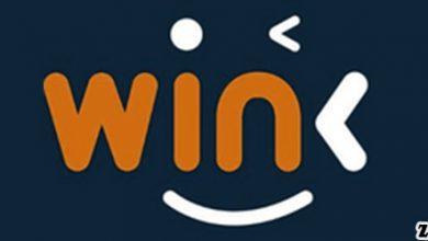ارز وینک Win