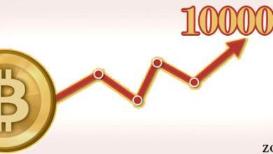 بلومبرگ: صعود ارزش بیت کوین به سوی 100000 دلار از رسیدن آن به زیر 20000 دلار محتمل تر است