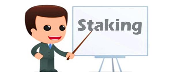 معرفی انواع استیکینگ Staking