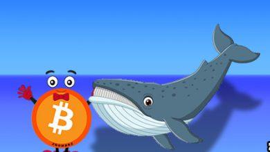 نهنگ ها در انتظار افزایش قیمت بیت کوین