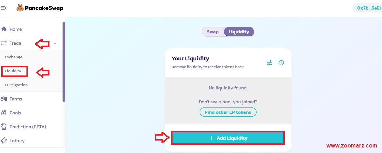 نحوه تامین نقدینگی Liquidity در صرافی پنکیک سواپ PancakeSwap
