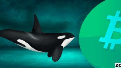 خرید 60 هزار واحد بیت کوین از سوی نهنگ ها در یک روز