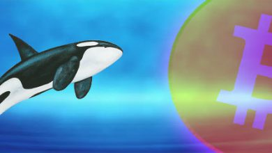 خرید 30 هزار واحدی بیت کوین از سوی یک نهنگ