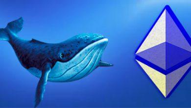 20 درصد از اتریوم موجود در دست نهنگ ها