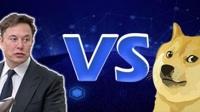 عکس پروفایل جدید ایلان ماسک علیه دوج کوین