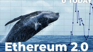 اطمینان نهنگ ها نسبت به قیمت اتریوم