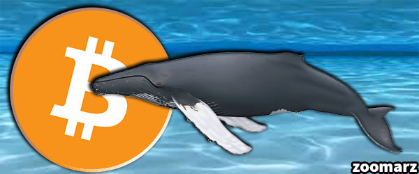 جابه جاییه بیش از 1.3 میلیون واحد بیت کوین توسط نهنگ ها