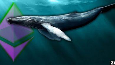 روز به روز قدرت نهنگ های اتریوم افزایش مییابد