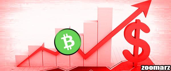 آیا استخراج بیت کوین کش Bitcoin Cash سودآور است؟