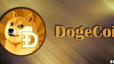 ارز دوج کوین چیست؟