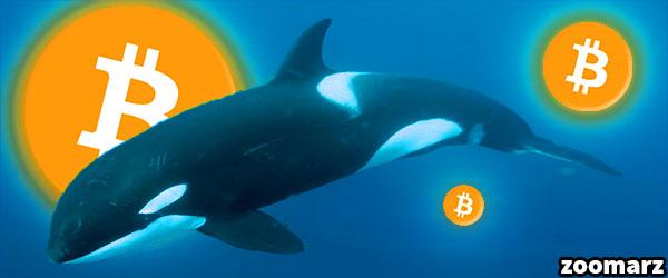 نهنگ ها 4 میلیارد دلار بیت کوین را جا به جا کردند