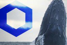 حجمی عظیم از LINK در اختیار نهنگ ها