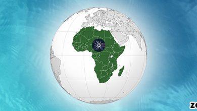 خبر جدید: تور کاردانو در آفریقا آغاز شد